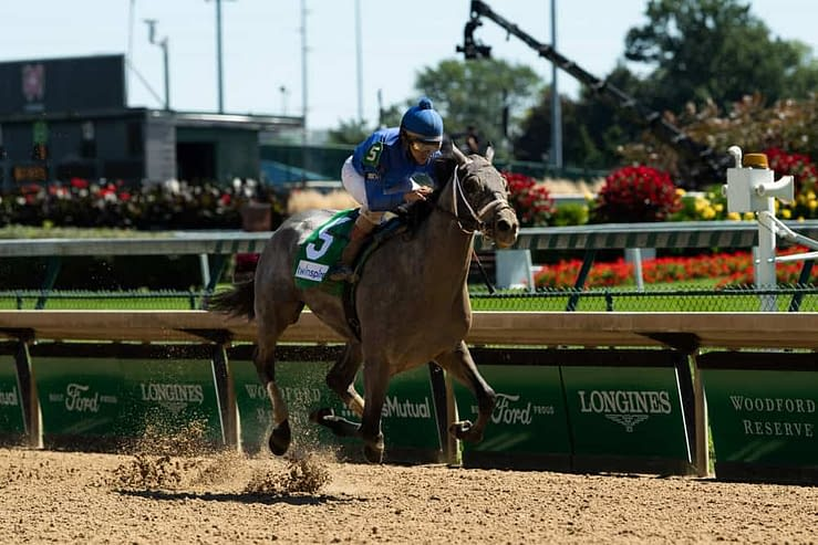 Ben Rasa gives expert Horse Racing betting picks and predictions with exacta, trifecta & win bets for Saturday's Belmont Stakes.
