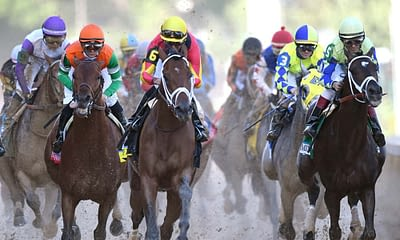 Ben Rasa and Evan Schwartz give Breeders' Cup betting picks and talk horse betting odds + picks for Saturday's Cup Classic race | 11/7