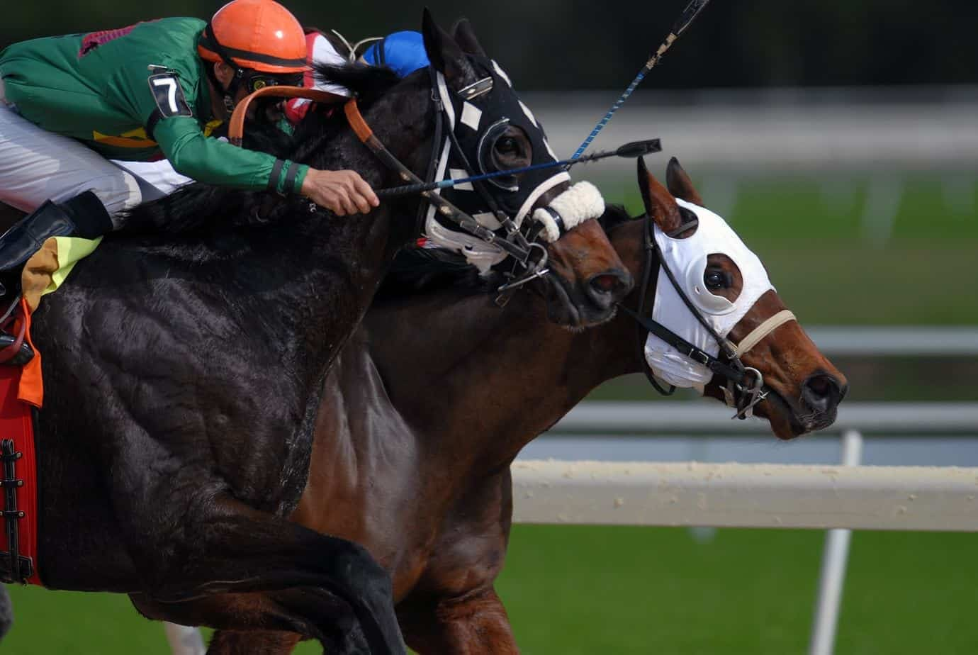 Mlb betting pick of the day horses football betting strategy home underdogs