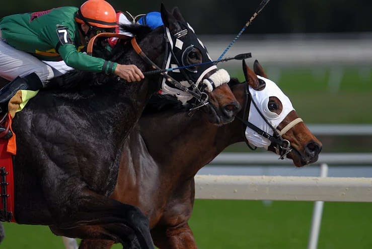 Horse Racing: Betting the Belmont Stakes - Picks