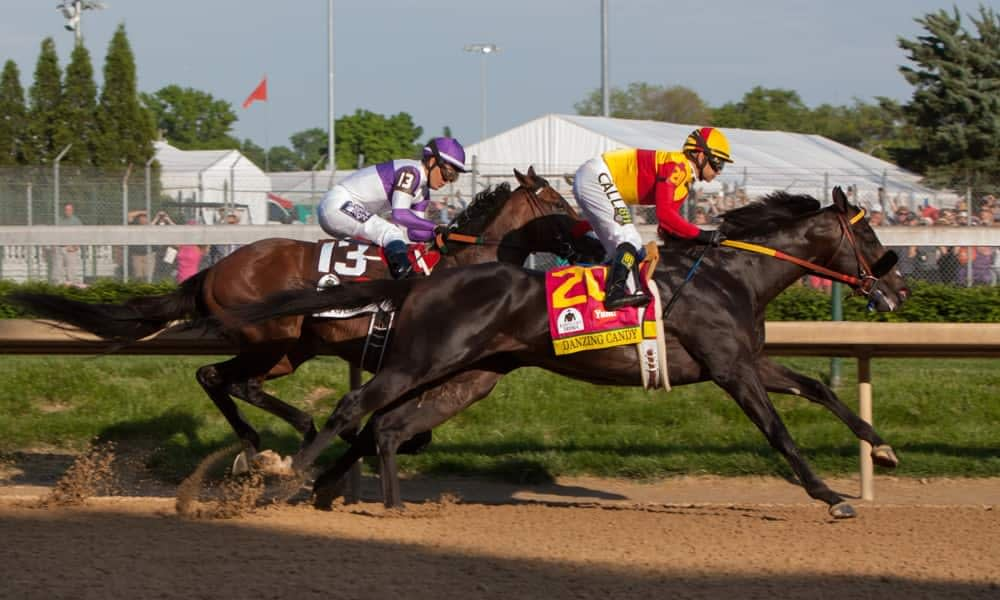 Horse racing: 2019 Belmont Stakes Preview and Picks