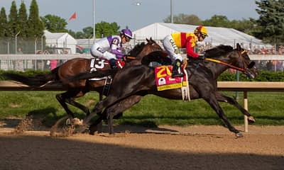 Expert Preakness Stakes betting picks, predictions, trifecta, exacta, win place show best bets with Crowded Trade and Midnight Bourbon on Saturday May 15 at Pimlico Race Course