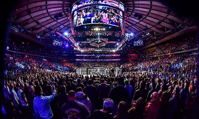 MMA DFS picks for DraftKings and FanDuel UFC Fight Night Hall vs. Strickland with Awesemo's FREE expert projections | 7/31.